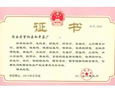 和平茶业-龙头企业证书