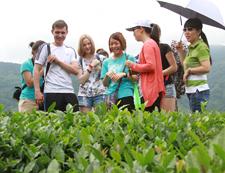 外国友人参观和平茶园基地