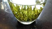 紫阳县多点聚力打造富硒茶品牌